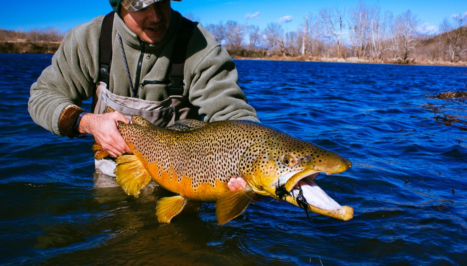 Guided Fly Fishing Trips - Dally's Ozark Fly Fisher