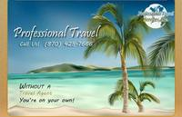 Professional Travel Services