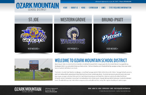 Ozark Mountain Schools