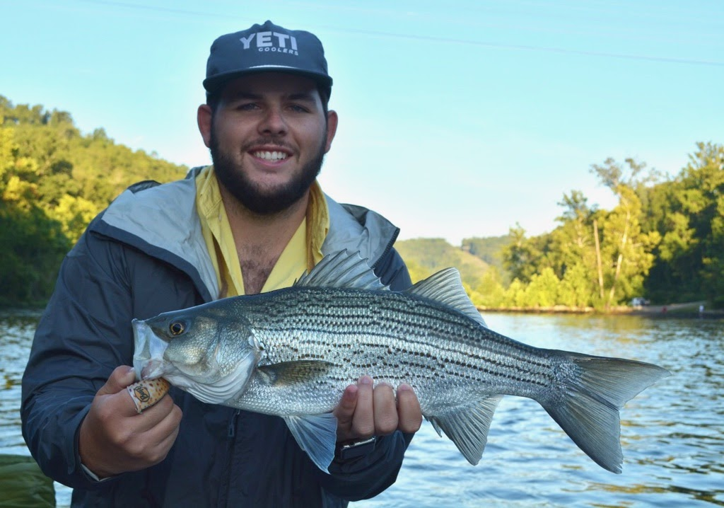 Jackson with another Norfork Striper