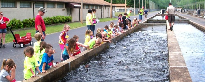 Norfork National Fish Hatchery