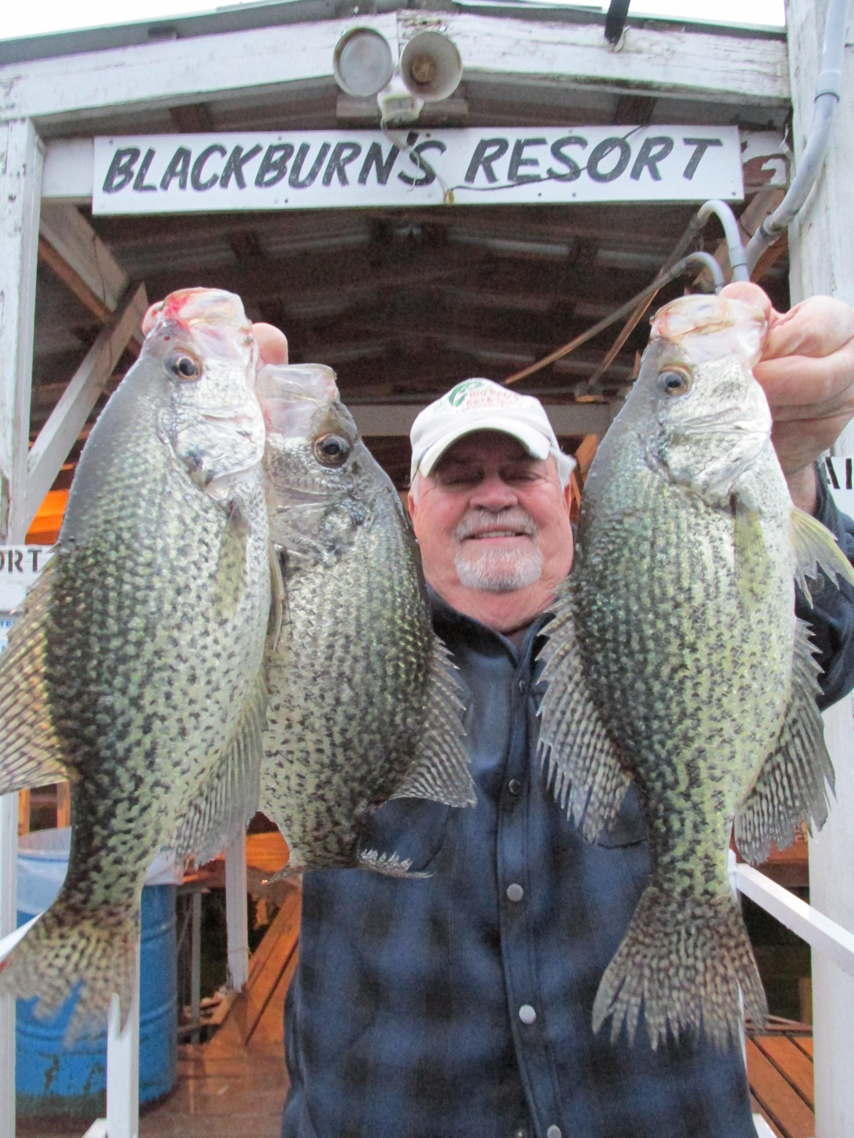 Blackburns Resort Lake Norfork