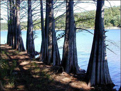 Pigeon Creek Mountain Biking Trail System